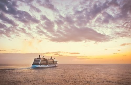 cruise winnen