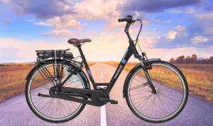 Pegasus e-bike